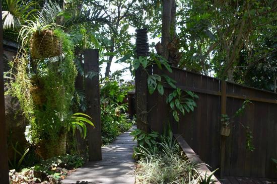 Chemin Vers Le Jardin Zen Picture Of Spa Tendacayou