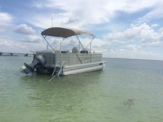 Clearwater Boat Rentals: Sweetwater Pontoon