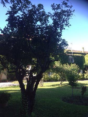 Caza Sereyna Avignon