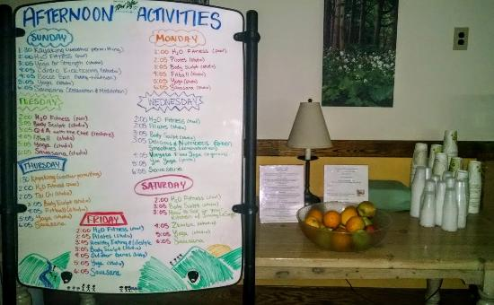 Mendon, VT: Daily Activity Board