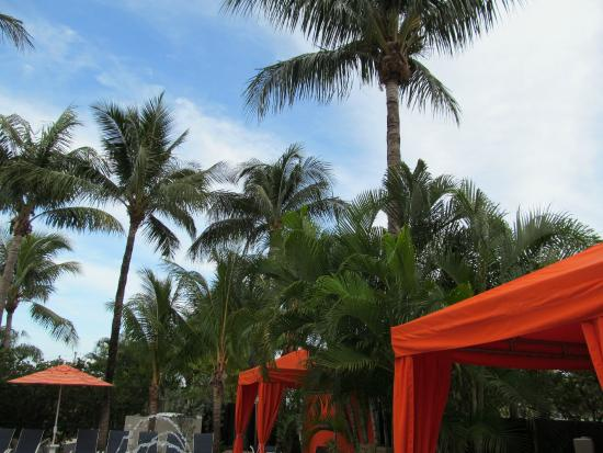 The Cabanas Guesthouse & Spa: Pool area.