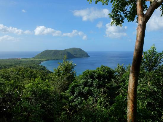 Manicou River: Each cottage has a stunning ocean view