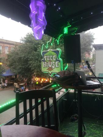 Tree House: Great spot!