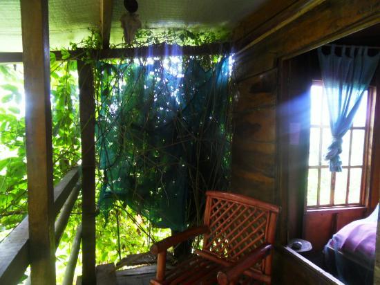 Hospedaje Ecologico Nahual: recamara 2, Mariposa treehouse