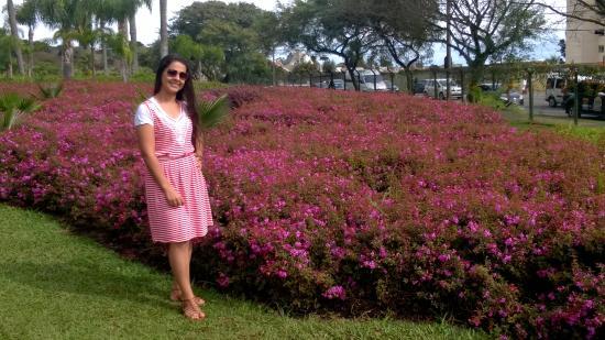 fotos jardim cultural ? Doitri.com