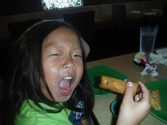 Thai Spice: Our Grandson Love the Spring Rolls