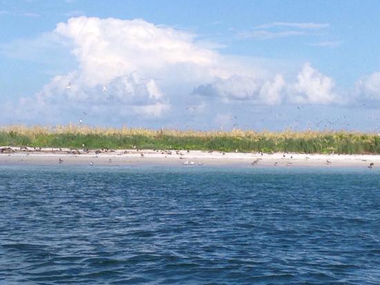 Bradenton, Floride : photo1.jpg