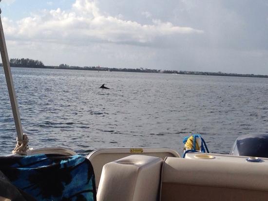 Bradenton, Floride : photo2.jpg