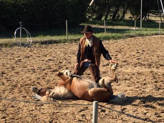 Her'equestre : photo0.jpg