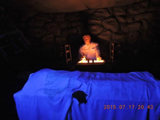 House of Frankenstein Wax Museum : dando vida ao velho frank