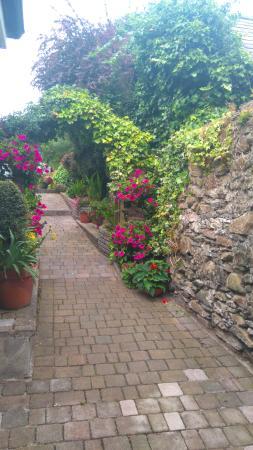 Ashleigh House : Beautiful gardens