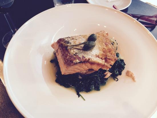 Ho Ho Kus, NJ: Salmon