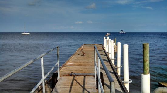 Cedar Keys National Wildlife Refuge: View from the dock
