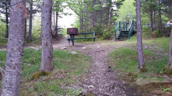 Stephenville, Canada: Campsite 27
