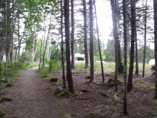 Sir Richards Squires Memorial Provincial Park 사진