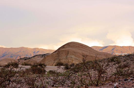 Resultado de imagen para amaicha del valle