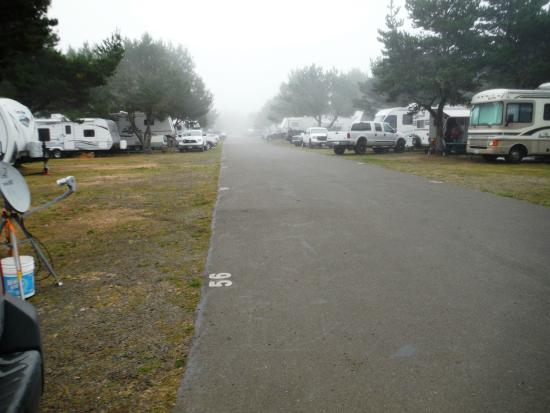 Westport Beach RV Park & Campground - Home | Facebook