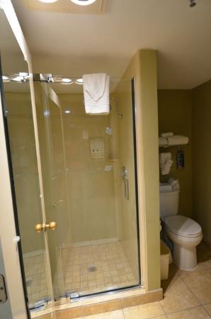BEST WESTERN PLUS Las Brisas Hotel: La cabine de douche