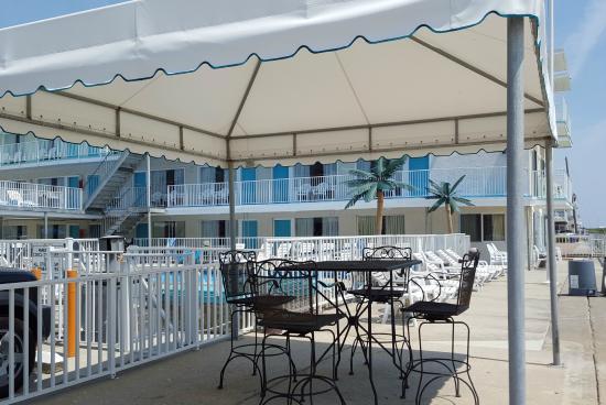Conca D'or Motel: Oceanfront Gazebo on Sundeck