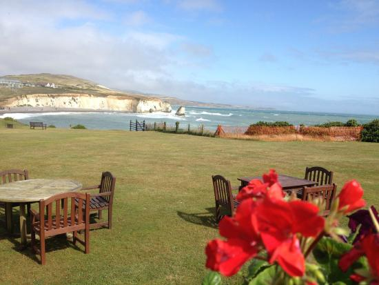 Freshwater Bay Country House: View from the pool across to the chalk cliffs