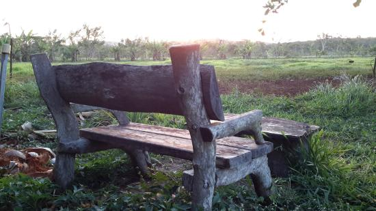 Hill Top Farmstay Accommodation Cooktown: The sunset chair - byo wine
