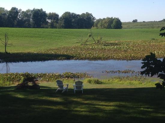 Allegan, MI: Just outside rooms like the camelot suite, king arthur, sir lancelot there is this outdoor view