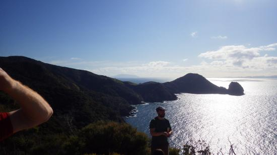 Coromandel Adventures - Day Tours: The view from the half way viewpoint !