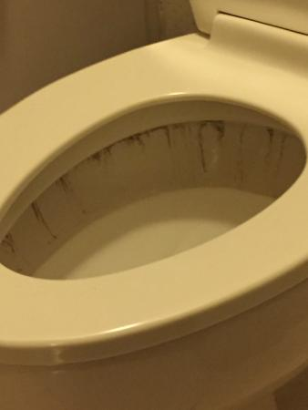 "Econo Lodge: ""Cleaned"" toilet after room finally ready at 9 p.m."