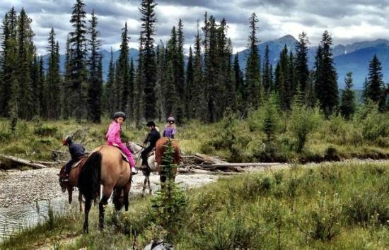 Bear Corner Bed and Bale: Riding w Bear Corner Bed & Bale in Blaeberry