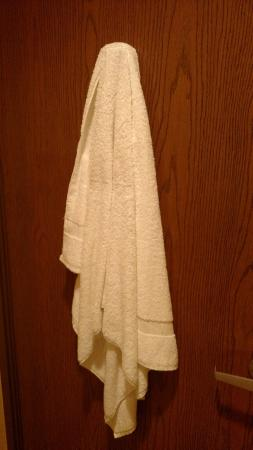 Quality Inn and Suites: Towel hanging in bathroom upon arrival.