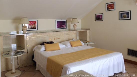 Hotel Eden Park: Dalla camera, a vista di notte e di giorno.- la prima colazione e/o il dinner nella pineta vista
