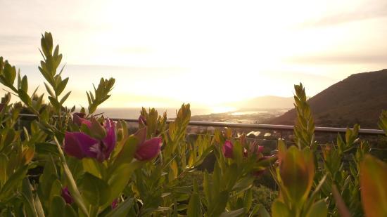 Moresco Park Hotel: Panorama