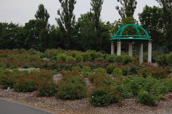 Haboro Rose Garden: お洒落な感じのバラ園です。