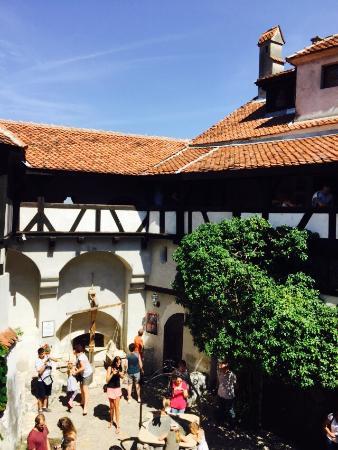 Bran Castle (Dracula's Castle): 吸血疆屍城堡:美麗、有趣、別緻地方