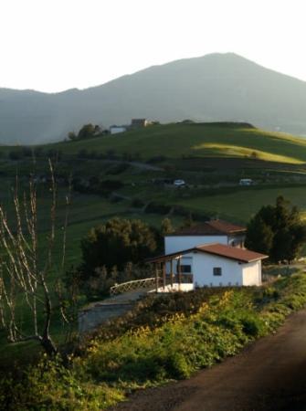 Azienda Agrituristica La Mortella