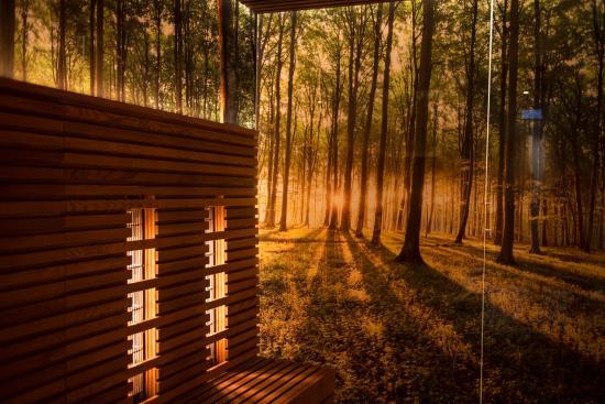 Rimbach, Germany: Sauna
