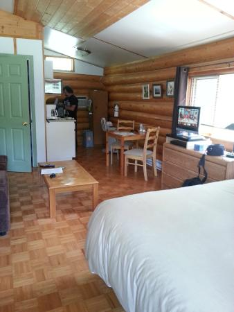 Cedar Haven Cabins and Resort: View from the door
