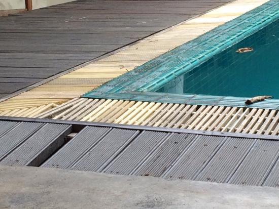 Smile House Guest House: État de délabrement de la piscine