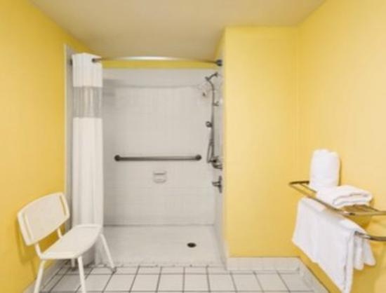 Ramada San Antonio/Near SeaWorld: ADA Accessible Shower
