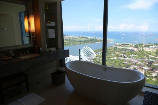 Tub In Addition To Shower Area With A View To Die For