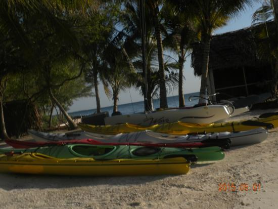Thatch Caye Resort : Beach are was great!