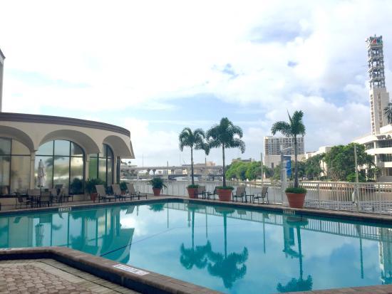 Pool - Sheraton Tampa Riverwalk Hotel Photo