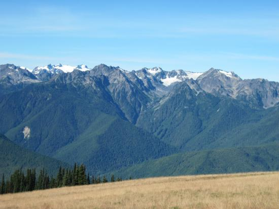 View of the Olympic Range from Hurricane Ridge Visitor's Center
