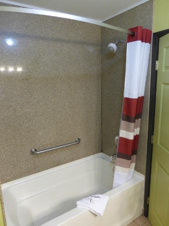 Melvindale, MI: Bathroom