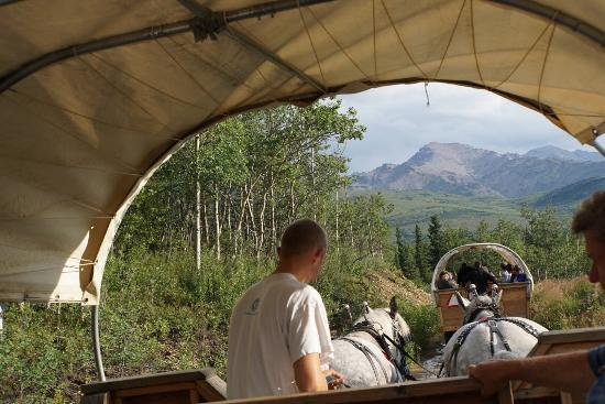 Healy, AK: Warm, friendly and full of good information - Radek & Bren on the Covered Wagon excursion