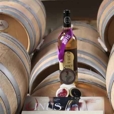 Viña Sicilia: Premios de vino que aquí se produce