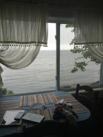 Oakland Seashore Motel & Cabins: View from 2nd cottage