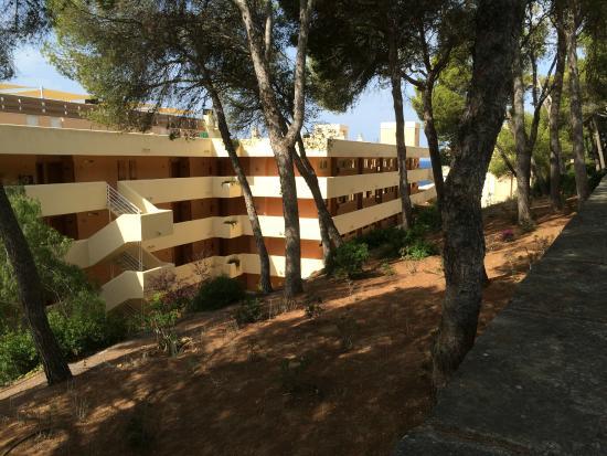 Piscine picture of iberostar suites hotel jardin del sol for Jardin del sol santa ponsa