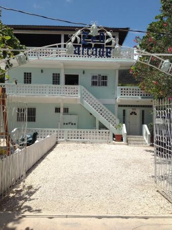 Zen Belize Wellness Center and Inn