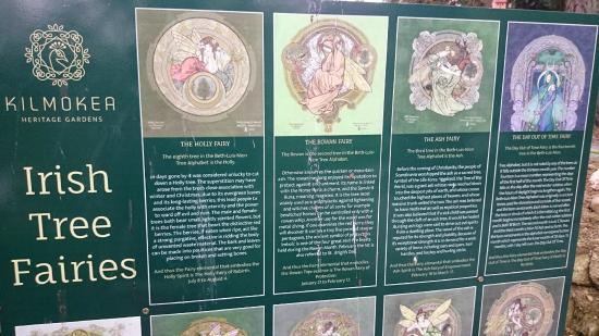 Campile, Irlandia: tree fairies